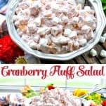 Long collage image of Cranberry Fluff Salad