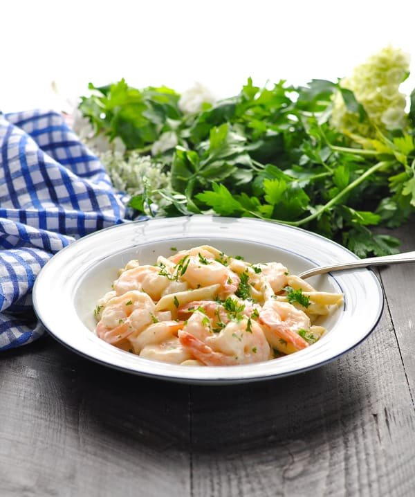 Front view of Shrimp Alfredo pasta in a white bowl with blue trim