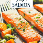Close up side shot of sheet pan salmon with maple glaze and text title overlay