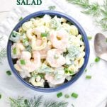 Overhead shot of Shrimp and Pasta Salad with text overlay