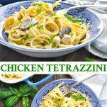 Long collage of chicken tetrazzini recipe