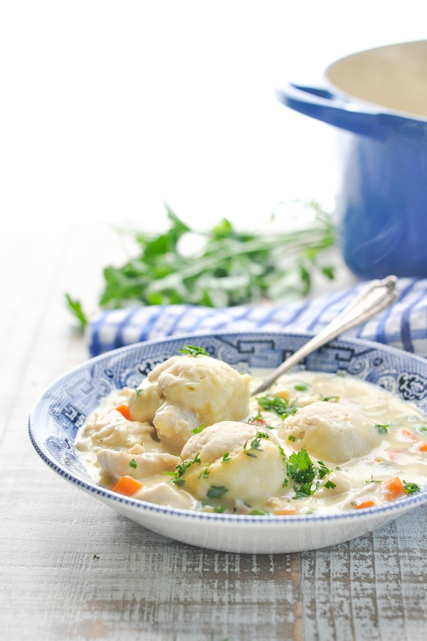 Front shot of chicken and gravy with dumplings in a blue and white bowl