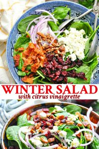 Long collage image of Winter Salad with citrus vinaigrette