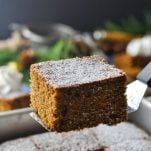 Close up shot of old fashioned gingerbread cake on a spatula