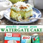 Long collage of Watergate Cake