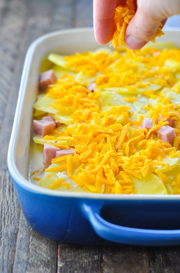 Adding cheese to top of scalloped potatoes and ham casserole