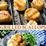 Long collage image of Grilled Scallops Recipe