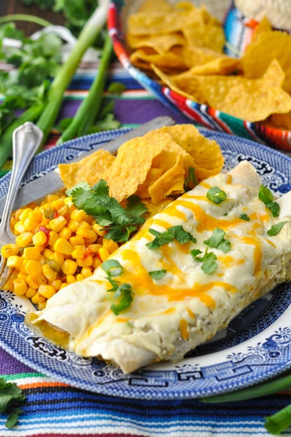 Two sour cream chicken enchiladas on a plate