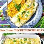 Long collage image of Sour Cream Chicken Enchiladas