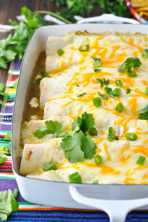 Front shot of white chicken enchiladas in a dish with melted cheese on top and fresh cilantro