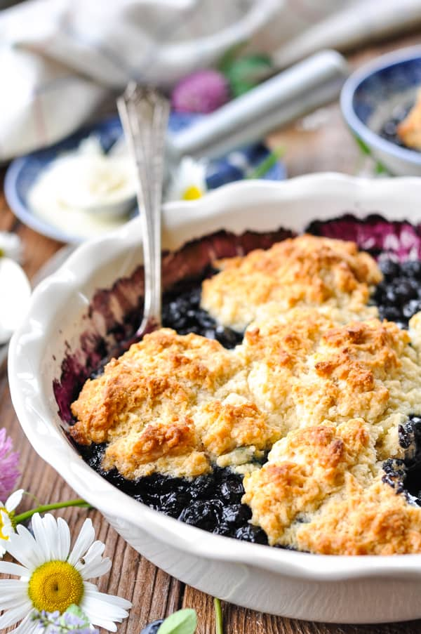 Front shot of a spoon scooping up a serving of warm blueberry cobbler