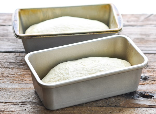 Two loaf pans with bread dough