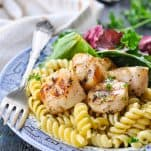 Front shot of a plate of grilled scallops with pasta and salad