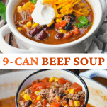 Long collage of 9 Can Beef Soup