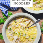 Overhead image of two bowls of old fashioned chicken and noodles with text title box at top