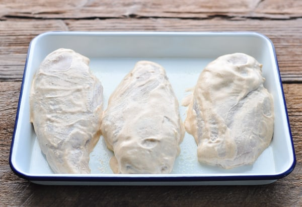 Sour cream chicken breasts on a baking sheet before going in the oven