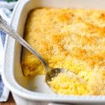 Front shot of a white dish of baked macaroni and cheese