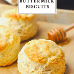 Close up shot of a homemade buttermilk biscuit on a baking sheet with text title box