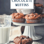 Table full of homemade chocolate muffins with a text title box at the top