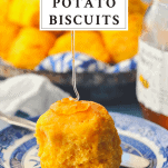 An easy sweet potato biscuit recipe on a plate with honey and a text title box at the top