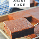 Image of Texas Sheet Cake on a serving spatula with text title box at top