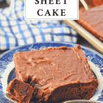 Front shot of a slice of Texas Sheet Cake with text title box at top