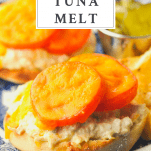 An easy tuna melt recipe served on a plate with a text title box at the top