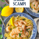 Overhead shot of easy shrimp scampi in a bowl with text title box at the top