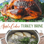 Long collage image of Apple Cider Turkey Brine