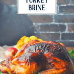 Apple cider turkey brine used to for a beautiful whole oven roasted turkey with a text title box at the top