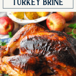 Close side shot of oven roasted turkey with text title box at the top