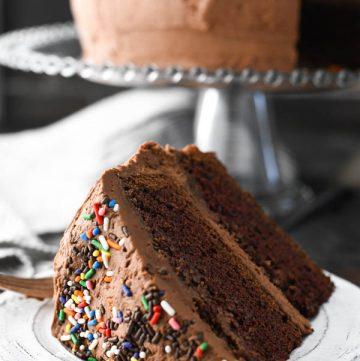 Slice of homemade chocolate cake on a white plate