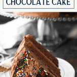 Front shot of a piece of easy chocolate cake on a white plate with text title box at the top