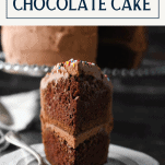 Close up front shot of a slice of moist chocolate cake on a white plate with text title box at top