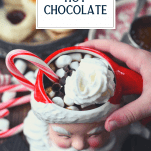Child's hand holding mug of homemade hot cocoa with text title at top