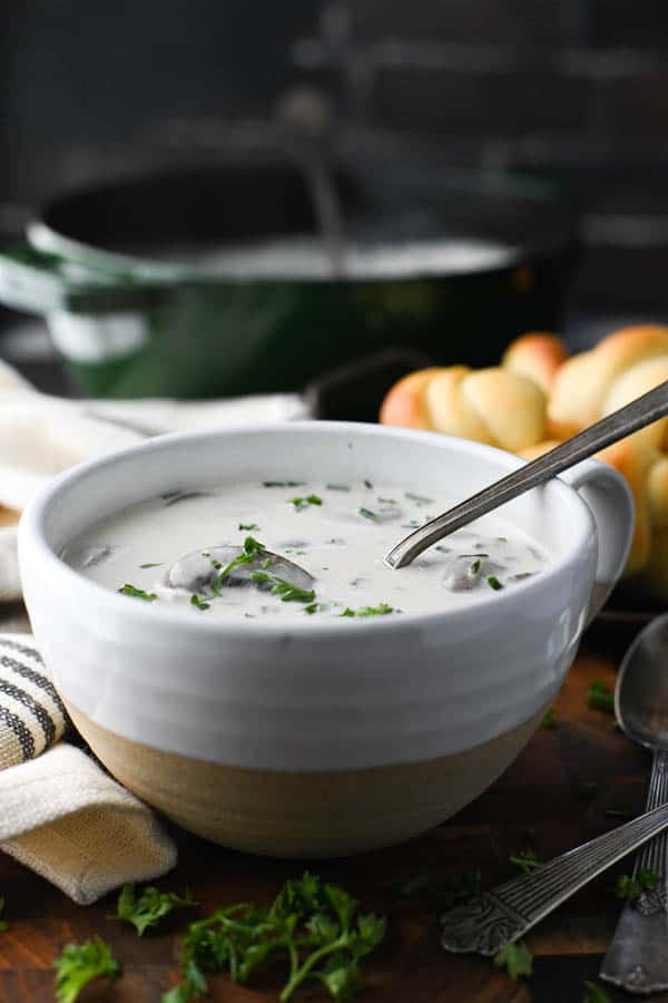 Front shot of a bowl of cream of mushroom soup with fresh parsley on top