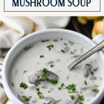 Close up shot of a spoon in a bowl of cream of mushroom soup recipe with text title box at the top