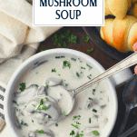 Overhead image of a bowl of cream of mushroom soup with text title overlay