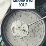 Overhead shot of a ladle in a pot of mushroom soup with text title overlay