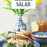 Chicken salad sandwich on a blue and white plate with text title overlay