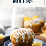 Homemade lemon poppy seed muffins on a plate with text title box at top