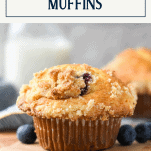 Close up side shot of coffee house blueberry muffins with text title box at top