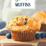 Side shot of blueberry muffins with crumb topping with a text title overlay