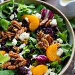 Close up side shot of a big bowl of house salad with cranberries and homemade dressing