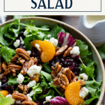 Close up shot of a homemade salad with cranberries and candied pecans with text title box at top