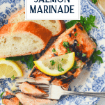 Overhead shot of salmon marinade with text title overlay
