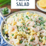 Close up side shot of a bowl of creamy shrimp pasta salad with mayo and text title overlay