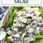 Text title box at top of a close up image of Waldorf Salad recipe