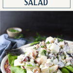 Side shot of a plate of waldorf salad with text title box at top