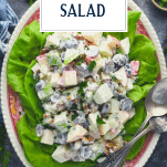 Overhead shot of Waldorf Salad on a red and white plate with text title overlay
